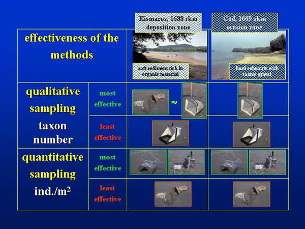 Qualitative and quantitative effectiveness of sampling techniques on different natural substrates