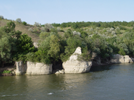 Natural banks still characterize many parts of the Danube